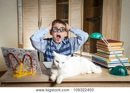 Crazy Boy Wearing Funny Glasses Doing Homework With Cat Sitting On The Desk. Child With Learning Dif