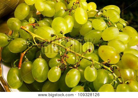 white wine grapes in a market