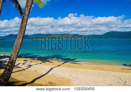 Beach on Daydream Island, Australia