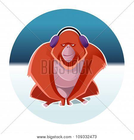 Orangutan and the winter