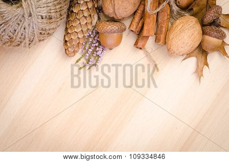 autumn background with cone