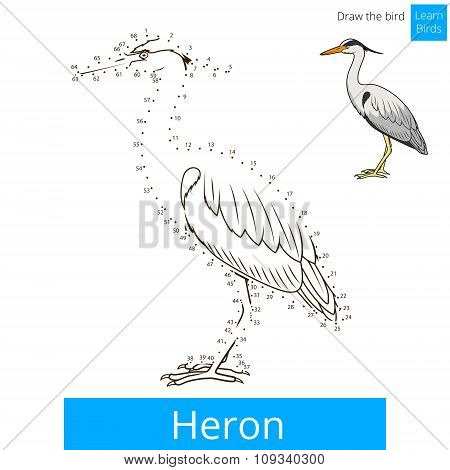 Heron bird learn to draw vector
