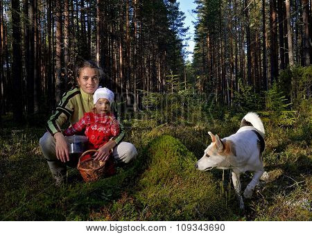The Young Beautiful Girl With The Little Daughter Picking  Bilberry