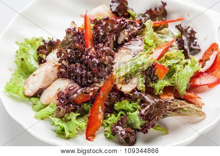 Salad with octopus, lettuce and paprika.