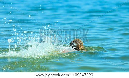 Little Girl Kid Swimming In Sea Water. Fun