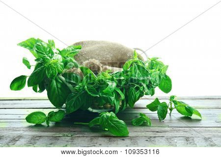 Green fresh basil in basket with sackcloth isolated on white