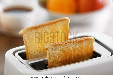 A couple of crusty toasts in the toaster, close-up