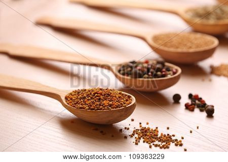 Variety of spices in spoons on the kitchen table