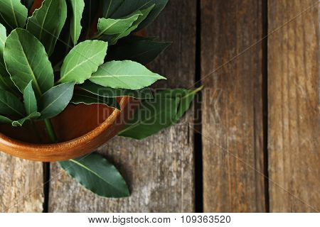 Fresh bay leaves in bowl on vintage wooden table