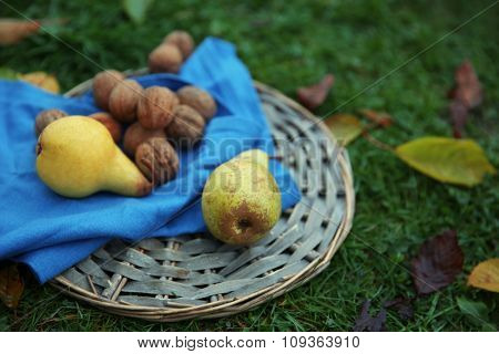 Fruits and walnuts on wicker mat, on green grass background