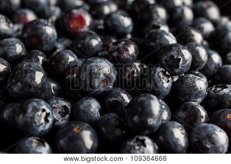 Blueberries from side