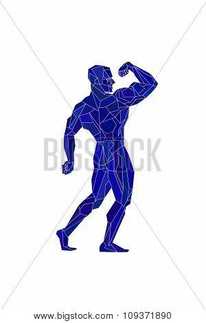 Polygonal Blue Bodybuilder, Silhouette.