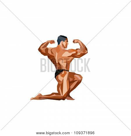 Colored Posing Bodybuilder, Silhouette.