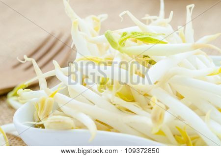 Mung Bean Sprouts In White Cup.