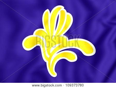 Flag Of Brussels, Belgium.