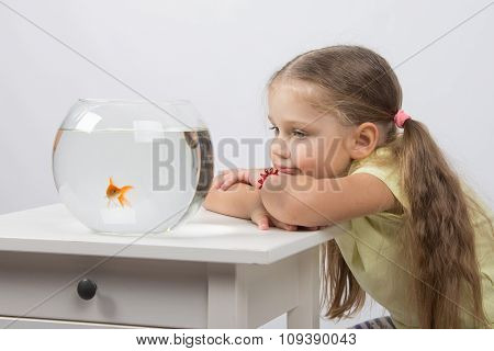 Thoughtful And Dreams Of A Girl Sitting In Front Of A Goldfish