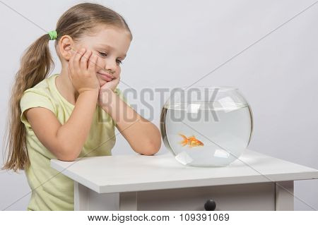 Four-year Girl Is Looking At A Goldfish In An Aquarium