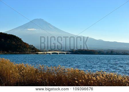 Mt Fuji From Lake Kawaguchiko, Tokyo Japan