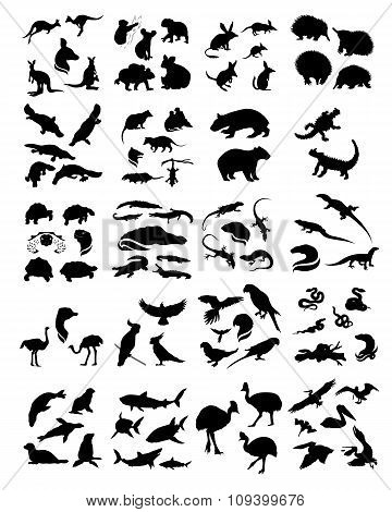 Big set of australian animals silhouettes.
