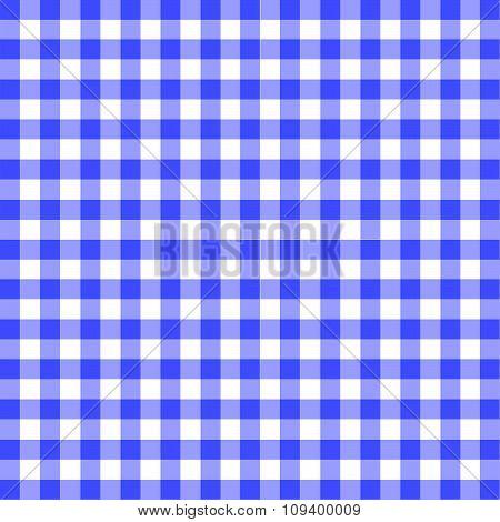 Blue Gingham Material