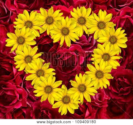 Heart Of Yellow Flowers Of Decorative Sunflowers Helinthus And Red Rose Background