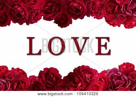 Love Card With Bush Of Red Rose Flowers Background Isolated On White