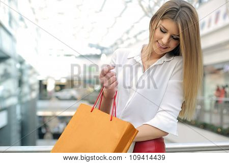 Beautiful woman doing shopping