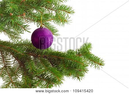 Fragment Of A Decorated Christmas Trees