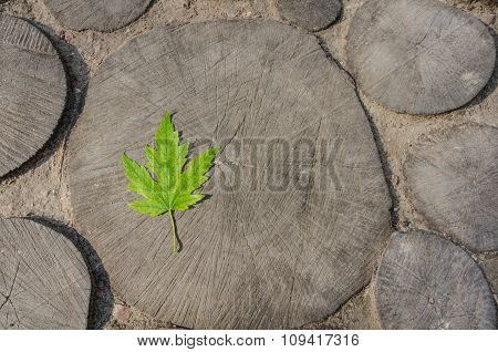 The Maple Leaf On Wooden Background