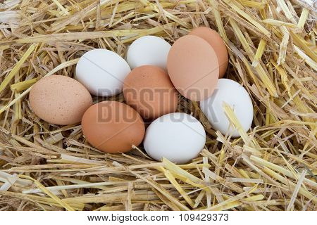 White And Brown Eggs In The Straw On Wooden Background