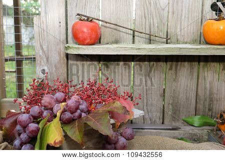 Organic Fruit In Basket In Autumn Fresh Grapes, In Nature