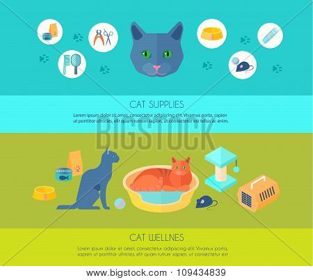 ICats 2 flat banners composition poster