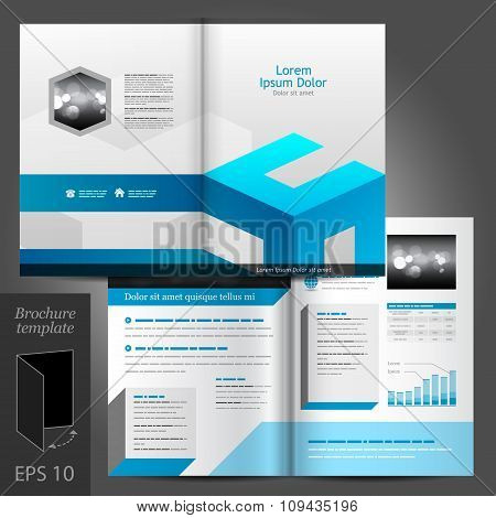 White Brochure Template Design With Blue Elements