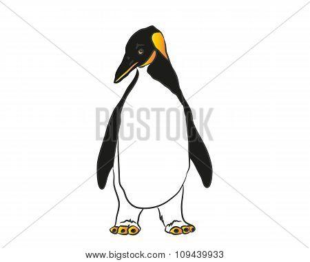 Penguin - Clip Art - Vector Illustration