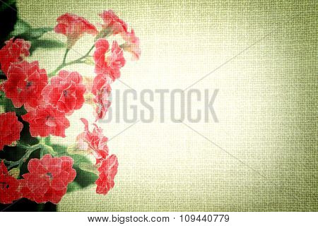 Bright Red Flowers Of Kalanchoe Plant On Old Cloth Texture Vintage Styled High Contrasted With Vigne