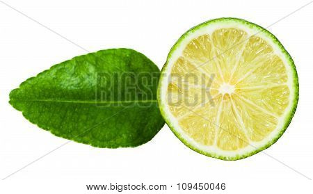 Half Of Green Kaffir Lime Fruit With Leaf Isolated