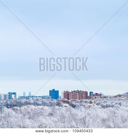 Cold Blue Sky Over Town And Snow Woods In Winter