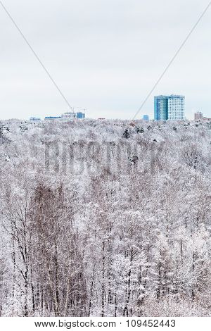 House And Snow Forest In Winter Day