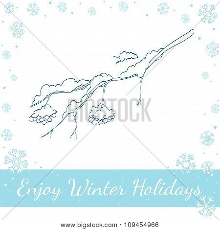 Winter Rowan Branch. Vector Illustration