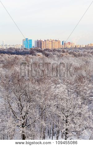 Apartment Houses And Snow Forest In Winter