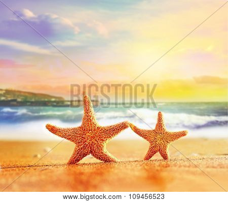 Starfish On Yellow Sand Near The Sea