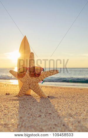 Starfish wearing sunglasses  on the beach