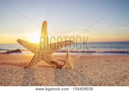 Two Starfish on the beach at sunrise