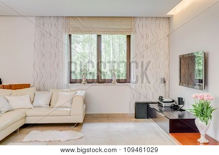Luxurious Leather Sofa
