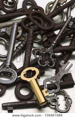 golden key amid rusty ones