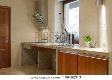 Kitchen Sink With Fancy Faucet