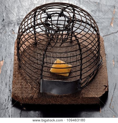 old mousetrap with a piece of cheese in it