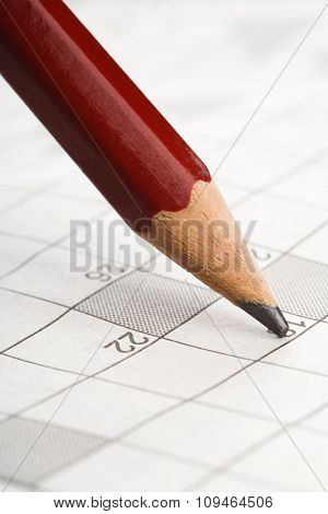 pencil on a crossword puzzle