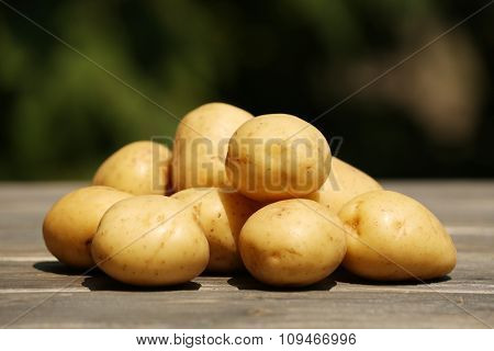 Pile of new potatoes on wooden table on natural blurred background