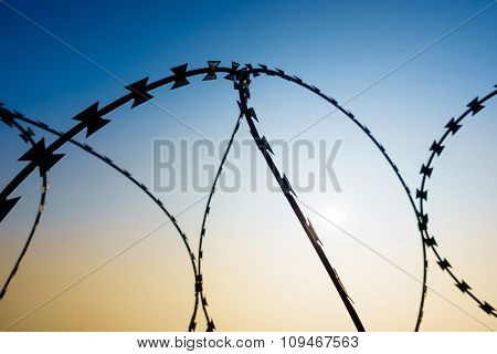 Razor wire, sky background